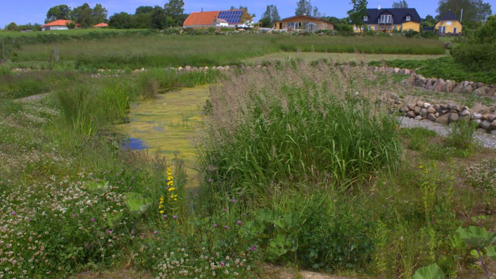 Vitsøhus Permakultur Have