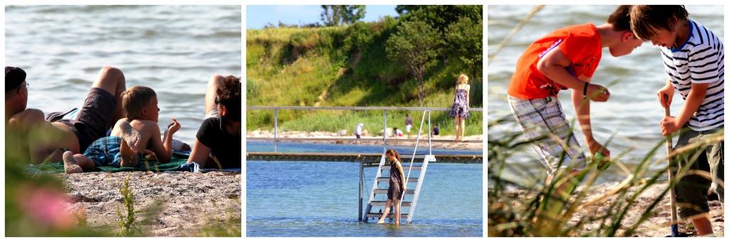 Søby Strand på Ærø, Tag dine forældre eller bedsteforældre under armen, og træk dem med til nogle helt fantastiske ting! Ærø er en ø omgivet af godt fiskevand.
