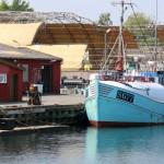 Søby Havn - ©Bjørg Kiær